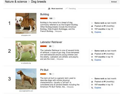 Google Trends for Kindle research